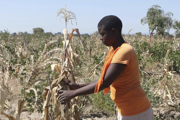 Resettled Farmers Refuse To Pay Land Tax