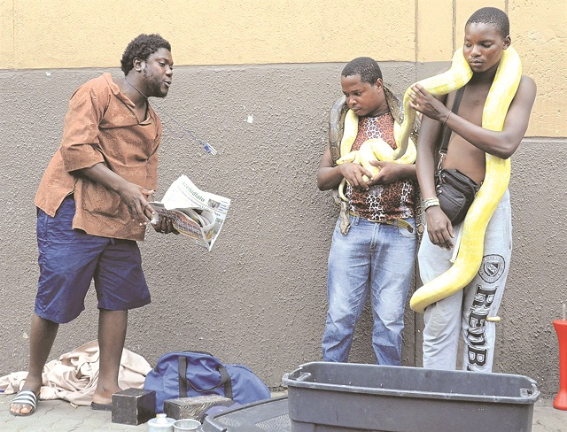 Sangoma Claims He Can Cure All Diseases Through His Snakes
