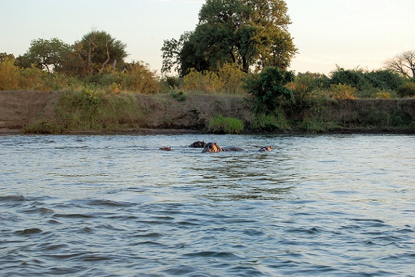 Kenyan Immigrants 'Drown' In The Zambezi While Skipping Border