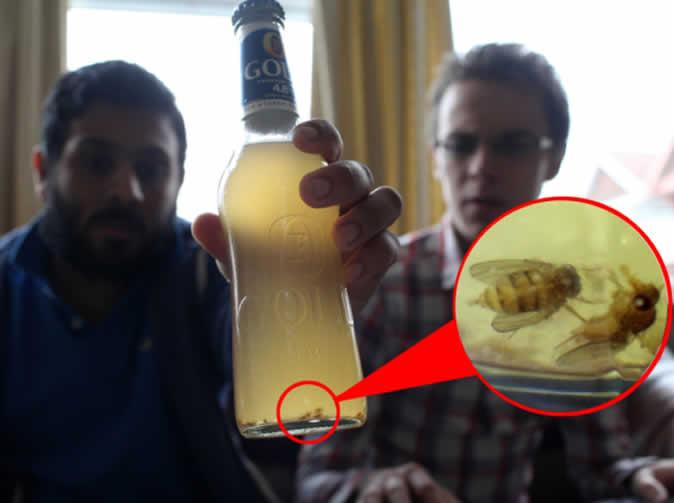 Man 'finds' 50 flies in beer bottle