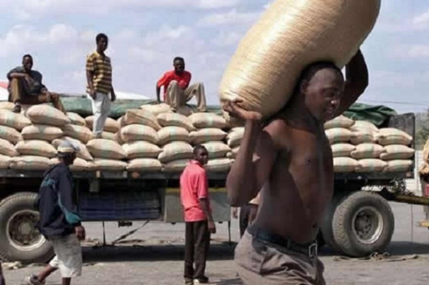 Govt Imports 100,000t Maize For Drought Stricken Zim