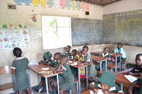 Matabeleland North's Best Schools Named