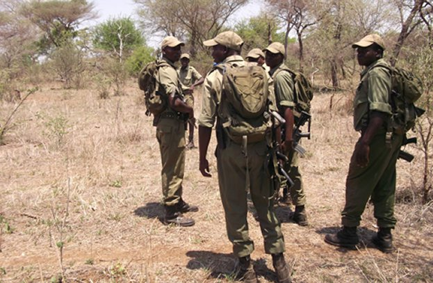 Zimparks On High Alert: 8 Zambian Poachers Terrorize Park